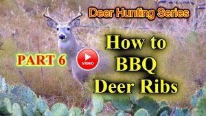 BBQ Deer Ribs