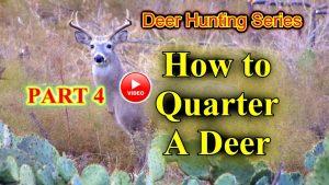how to quarter a deer