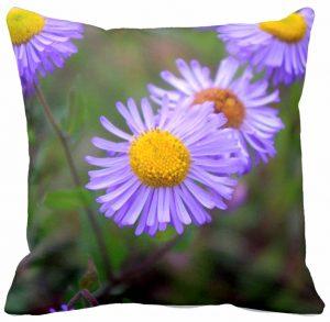Aspen Fleabane Daisy Pillow