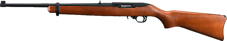 Ruger Model 10/22 22 Caliber Rifle with Wooden Stock
