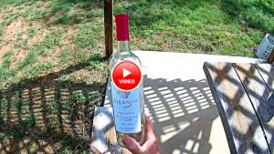 How to make a minnow trap out of a Wine Bottle