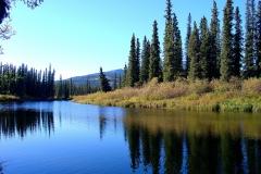 Morning on the Telsin River