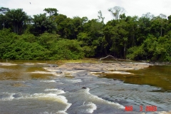 River Rapids on the Jatapu River