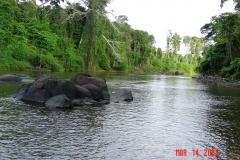 Upper Jatapu River Amazon Rain forest